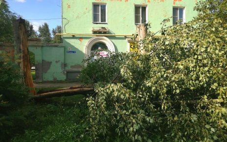 В Коркино и на Розе восстанавливают энергоснабжение