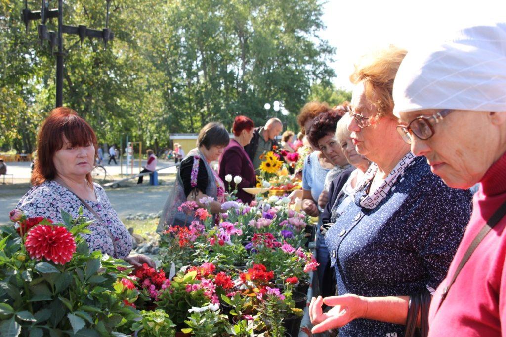 Чем коркинские садоводы и мастера удивляли земляков и гостей города?