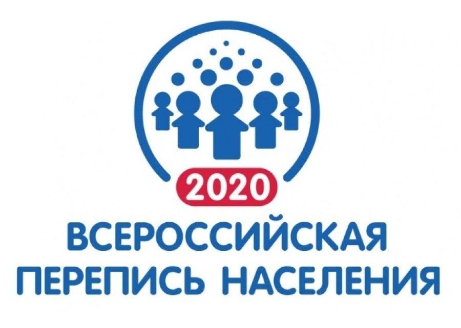 В Коркинском районе будут работать 18 регистраторов, которые обойдут все дома