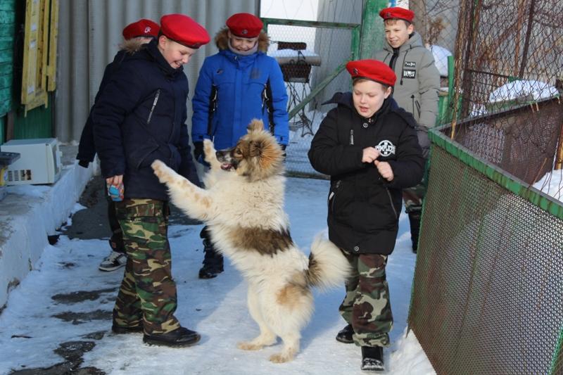 Полицейские вместе с юнармейцами помогли ветерану труда Лидии Шиловой