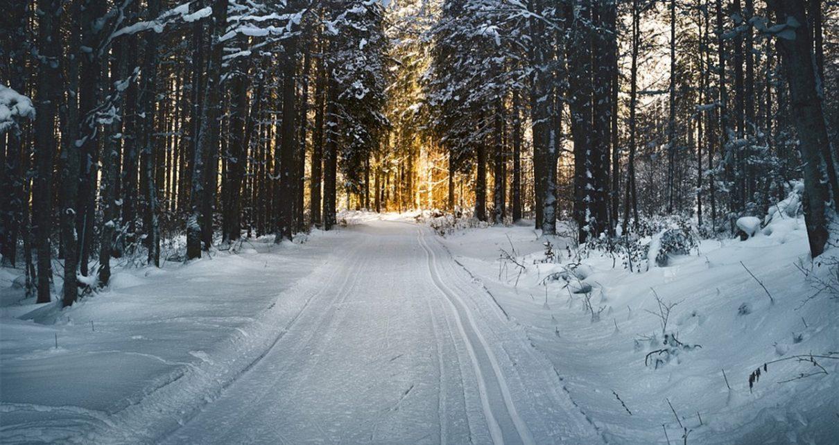 Коркинцев приглашают на лыжню