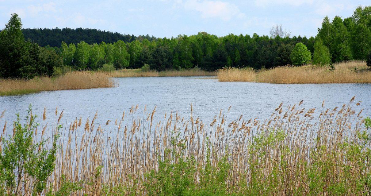 Двое молодых мужчин утонули в карьере на территории Коркинского района