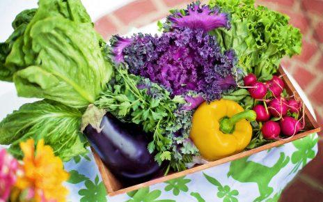 Если есть вопросы к качеству и безопасности плодовоовощной продукции