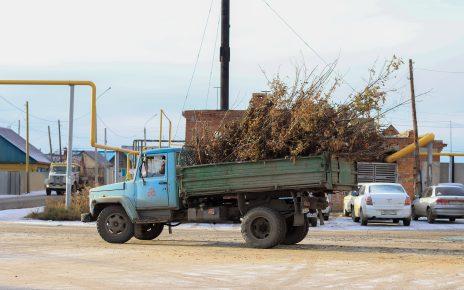После обращения в «Горнячку» наведён порядок на контейнерной площадке в Коркино