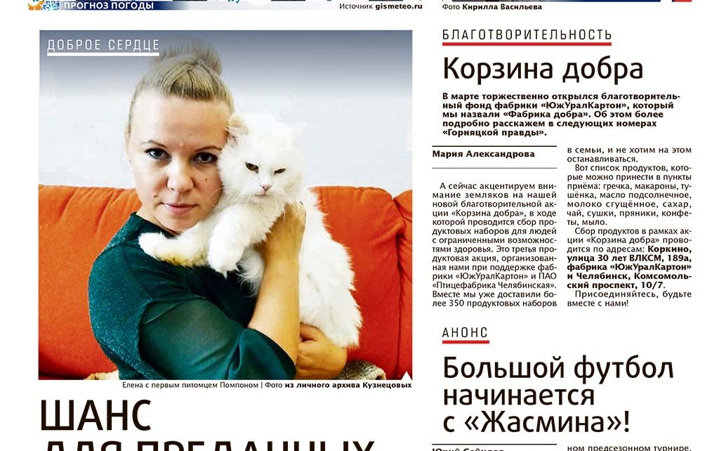 Электромонтёр из Первомайского спасает брошенных кошек и собак