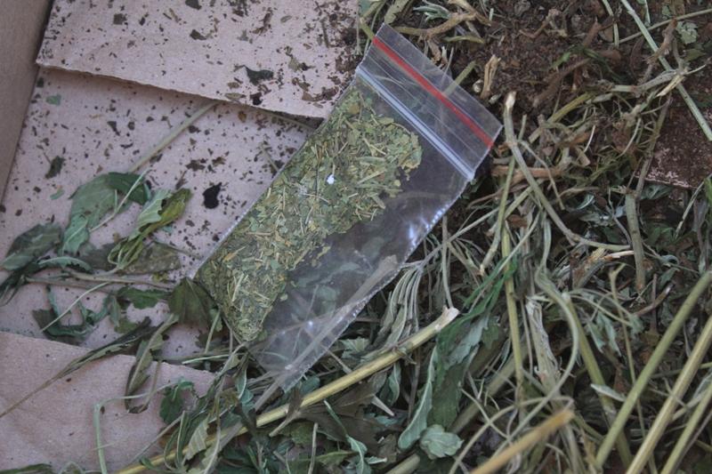 Коркинские полицейские уничтожили партию наркотических средств
