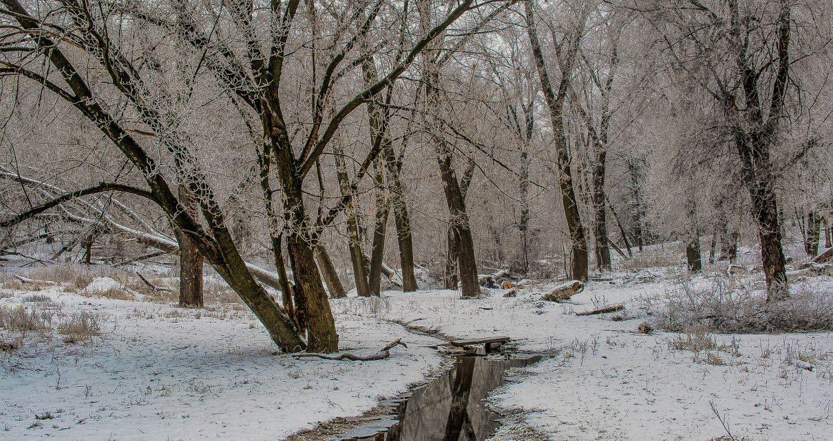 Жителей частного сектора Коркино просят расчищать от снега прилегающую территорию, чтобы избежать подтоплений