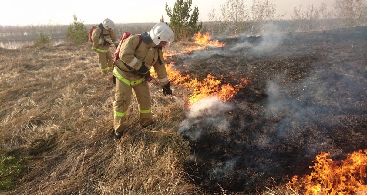 В Коркино зафиксированы первые природные пожары
