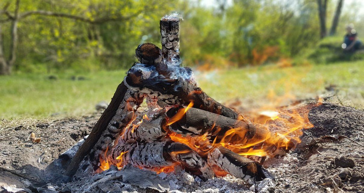 Коркинцам разрешён доступ в леса