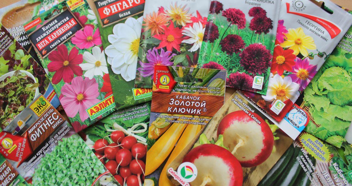 Подписчики на «ГП» 12 июня получат хорошие семена! Не упустите свой шанс